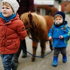 Janinas Erlebnishof Pony